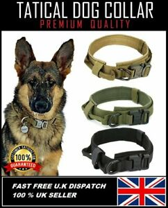 K9 TATICAL MILITARY DOG COLLAR  Padded with Handle Cobra Buckle Nylon Heavy Duty