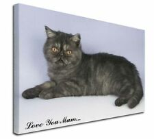 More details for exotic smoke cat 'love you mum' x-large 30