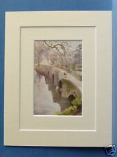 NEWBY BRIDGE WINDERMERE CUMBRIA VINTAGE PRINT 10X8 1908