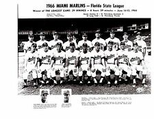 1966 MIAMI MARLINS 8X10 TEAM PHOTO  BASEBALL FLORIDA STATE LEAGUE USA