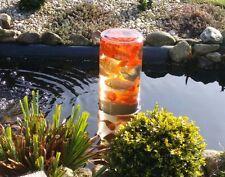 Fisch Glas Teich Glas Fischturm Fischaussichtsturm Goldfischglas Gartenteich