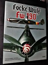 FOCKE-WULF FW 190 - par Robert Grinsbell - Avions