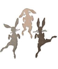 NEW Tim Holtz Bunny Hop Thinlits Die Set Sizzix 664421