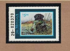 MT4 - Montana State Duck Stamp.   Single. MNH. OG.
