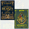 Fantastic Beasts and Hogwarts:A Cinematic Yearbook Collection 2 Books Set New