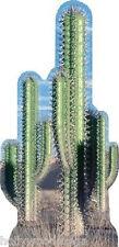 Group Cactus Standup Cardboard Cutout #584 - 4186