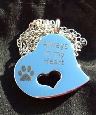 PET ASHES MEMORIAL NECKLACE - DOG OR CAT - SPECIAL OFFER