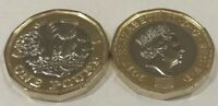 2017 One Pound brilliant uncirculated coin