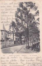 * BRAZIL - Petropolis, Rio de Janeiro - Avenida 7 de Setembro 1904