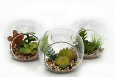 Set 3 Faux Succulents Glass Tea Light Candle Holder Artificial Plant Pot Plant