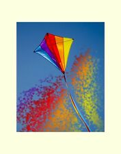 Kite matted picture interior wall decor flower Rea fine art photography