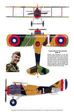U.S. WWI Fighter Spad XIII, Aviation Art Print, Ernie Boyette