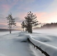 Christmas Cards & Packs-  First Snow - Winter Scene Landscapes - FREEPOST