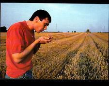 AGRICULTURE / CULTIVATEUR & MOISSONNEUSE à la MOISSON du BLE
