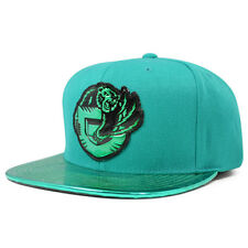 Vancouver Grizzlies TEAM STANDARD RADIATION Snapback Mitchell & Ness Hat- Teal