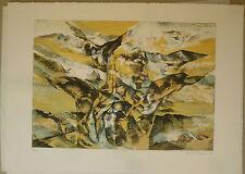Vasconi Franco (Alessandria,1920) -Crocefissione 1971-Litografia. Ed.Grafica Uno