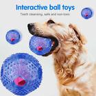 Pet Dog Toy Treat Ball Fun Interactive Chew IQ Food Dispenser Tricky Play Ball