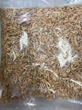 Freshwater Shrimp Freeze Dried - Fish Food (turtles, Koi, Saltwater/ Freshwater)