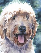 Goldendoodle Watercolor Dog 8 x 10 Art Print by Artist Djr