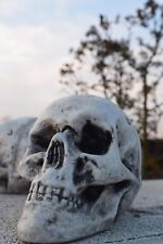 Deko Figur Totenkopf, Betonfigur, Steinfigur, Gartendeko, Steinguss, Frostfest