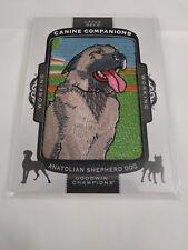 Anatolian Shepherd Dog 2017 Goodwin Champions Canine Companions Patch