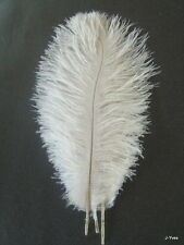"10 WHITE OSTRICH FEATHERS 13-15""L"