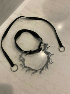 Dog Prong Collar, Adjustable Dog Pinch Collar Training Collar w/ plastic buckle