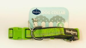 Blueberry Pet Classic Dog Collar Green Size Small Neck