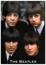 Poster THE BEATLES - Col 4 Heads ca60x85cm NEU 14944