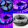 5M WS2811 5050 6803 RGB Magic Color 150/300 LED Strip Light 12V Car Decor Lamp