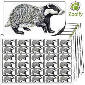 480 Badger Stickers (38 x 21mm) Quality Self Adhesive Animal Labels By Zooify.