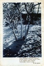 """* E. DE AMICIS """" Sulla campagna squallida e pensosa Scende la neve . . . """""""