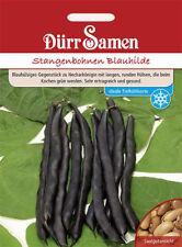 """Dürr Stangenbohne """" Blauhilde """" RARITÄT Tiefkühlsorte   Bohnen   SAMEN 0317"""