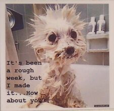 It's been a rough week, but I made it... How about you? wet dog bath cute magnet