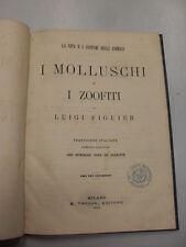 FIGUIER - MOLLUSCHI E I ZOOFITI - FRATELLI TREVES EDITORI