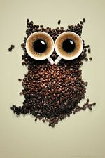 "20x30"" HD COFFEE OWL LARGE CANVAS PRINT WALL ART READY TO HANG"