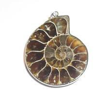 Ammoniten - Anhänger Fossil Kette Ammonit CY021