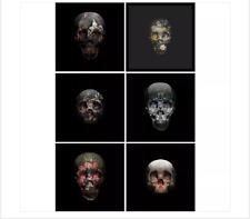 Magnus Gjoen Skulls Fine Art Print Set Supreme Retna Zevs Cleon Peterson