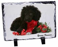 Miniature Poodle Dog 'Yours Forever' Photo Slate Christmas Gift Orna, AD-POD3ySL