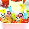 10X Bento Cute Animal Food Fruit Picks Forks Lunch Box Accessory Decor Tools Fun