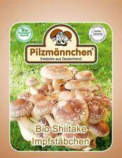 Shiitake Impfstäbchen (20 Stück) , Pilze auf Holz züchten, Impfdübel