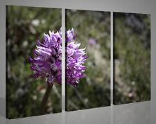 Quadri moderni paesaggi ORCHIDEA VOL II fiori stampe su tela canvas 130x90