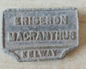 Antique Kelway plant marker Erigeron Macranthus metal detecting find
