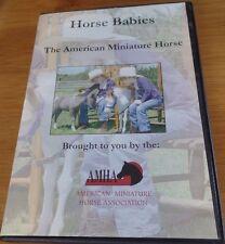New listing American Miniature Horse Cart Bridle Show Halter - Horse Babies Equestrian Dvd