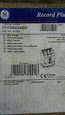 G&E Modula Plus 250A Main Switch fey306d250kf