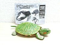Takara kaiyodo RED EAR SLIDER TURTLE animal figure w/moving parts
