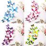 12 Schmetterlinge Wandoberfläche Wandtattoo Wandbilder Dekoration 5 Farben DE GE