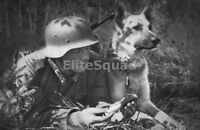 WW2 Photo Picture German Soldier with Dog & Message 233