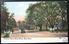 New York NY~1909 CENTRAL PARK WEST DRIVE~ Horse Buggy