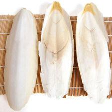 Birds Reptiles Cuttlefish Cuttle Fish Bone Parrotts Tortoise Food 1 bag